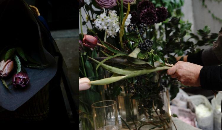 花と植物とkapoc